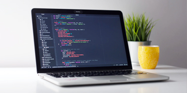Web Design & Development Services Company